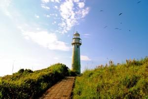 Farol das Conchas com gaivotas no céu